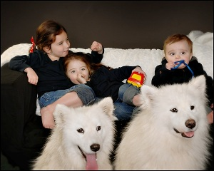 kids and dogs