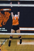 Sports Action photos - Volleyball